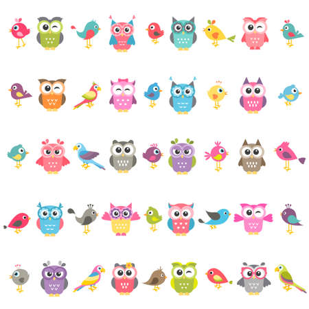 set of birds and owls isolated on white