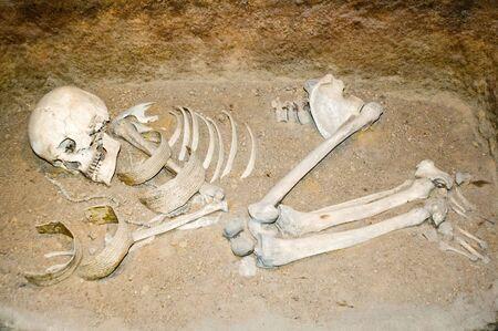 przodek: Polskie przodkiem pozostaje w Muzeum w Biskupin Zdjęcie Seryjne