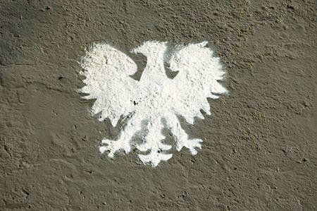 Original picture of eagle on the polish tank photo