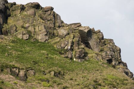 carboniferous: Popular climbing and walking destination, the Roaches, Staffordshire