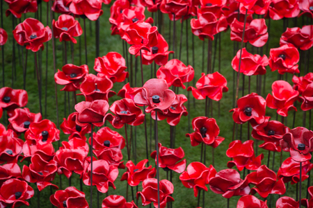 swept: Blood Swept Lands and Seas of Red. Close up of the 888,246 ceramic poppies marking the centenary of the outbreak of the First World War in the moat of the Tower of London, London, England. Stock Photo