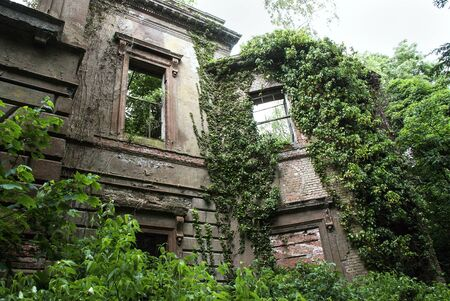 north window arch: Baron Hill House surrounded by trees, Anglesey, Wales Stock Photo