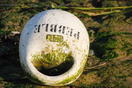 beach buoy: Close up of a buoy on a beach