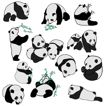 Big set of vector panda silhouettes isolated on white background. Cute panda baby set, flat design vector illustrator. Panda sleeps, eats a bamboo and plays. Animal in different poses, minimal image. Archivio Fotografico - 112007752