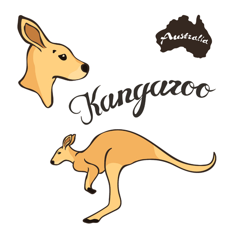 Australian kangaroo vector image isolated on white background. Brown kangaroo profile head. Cute jumping animal. Realistic kangaroo design. Fauna Australia symbol.