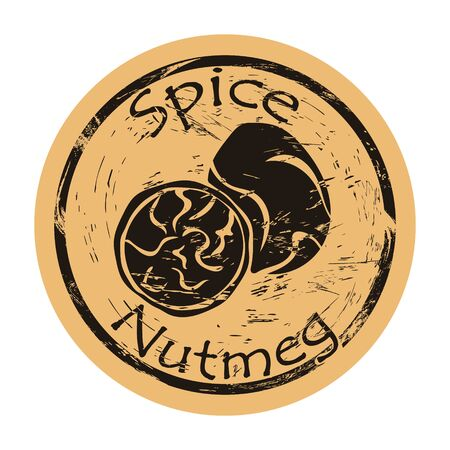 Nutmeg spice view icon vector round shabby emblem design, old retro style. Aroma spicy ingredient mail stamp on craft paper. Cooking ingredient vintage grunge sign.