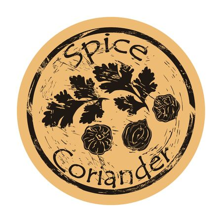 Coriander spice view icon vector round shabby emblem design, old retro style. Coriander branch and seeds spicy ingredient logo mail stamp on craft paper. Cooking ingredient vintage grunge sign.