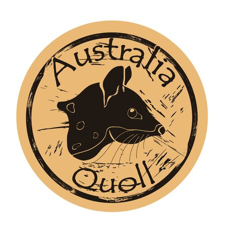 Quoll head silhouette icon vector round shabby emblem design, old retro style. Australian animal logo mail stamp on craft paper. Realistic quoll shape vintage grunge sign. Marsupial marten.
