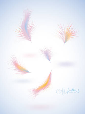 waft: Set of vector warm colors fluffy feathers