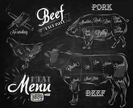 aves de corral: Tiza Ilustración de un elemento gráfico de la vendimia en el menú de filete de carne de pollo cerdo de la vaca dividida en trozos de carne