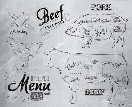 고기의 조각으로 나누어 고기 스테이크 소 돼지 닭의 메뉴에 빈티지 그래픽 요소의 그림 일러스트