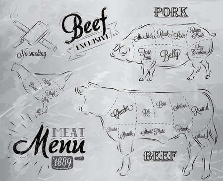 carnicero: Ilustración de un elemento gráfico de la vendimia en el menú de filete de carne de pollo cerdo de la vaca dividida en trozos de carne