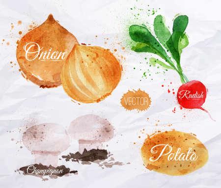 an onions: Los vehículos fijaron borrones y manchas de acuarela dibujadas con un rábanos, cebollas, patatas, champiñones Vectores