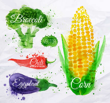 Vegetables set drawn watercolor blots and stains with a spray corn, broccoli, chili, eggplant Vector