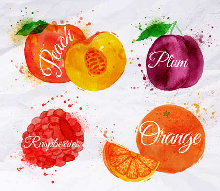 fruit: Fruit set drawn watercolor blots and stains with a spray peach, raspberry, plum, orange