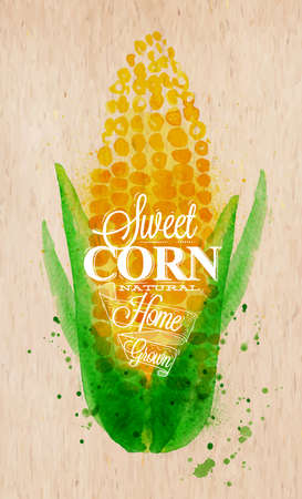 corn: Poster with watercolor corn lettering sweet corn natural home grown