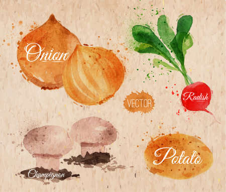 Vegetables set drawn watercolor blots and stains with a radishes, onions, potatoes, champignons on kraft paper Vector