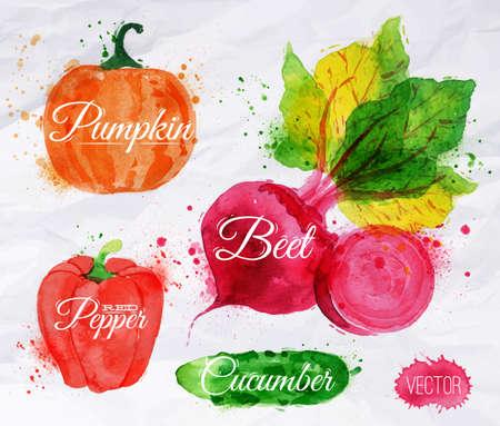 蔬菜集繪製的水彩畫印跡和污漬用噴霧南瓜,甜菜,辣椒,黃瓜 向量圖像