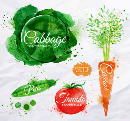 Vegetables set drawn watercolor blots and stains with a spray cabbage, carrot, tomato, peas Illustration