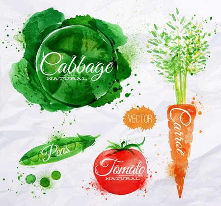 Zöldség készlet húzott akvarell pacák és foltok a spray-káposzta, sárgarépa, paradicsom, borsó Illusztráció