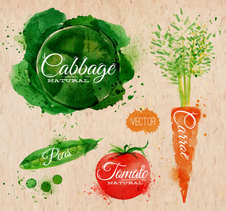 Vegetables set drawn watercolor blots and stains with a spray cabbage, carrot, tomato, peason kraft paper