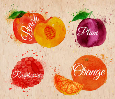 Fruit set drawn watercolor blots and stains with a spray peach, raspberry, plum, orange in kraft Illustration