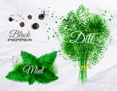 black pepper: Spices herbs set drawn watercolor blots and stains with a spray black pepper, mint, dill