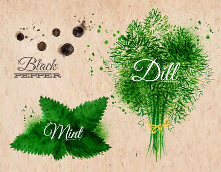 black pepper: Spices herbs set drawn watercolor blots and stains with a spray black pepper, mint, dill on kraft paper Illustration