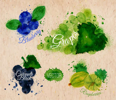 currants: Fruit watercolor blueberry, grapes, currants black, raspberries kraft