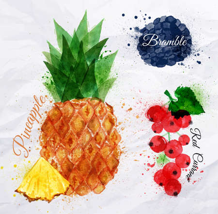 tropical fruits: Fruit watercolor pineapple, bramble, red currant