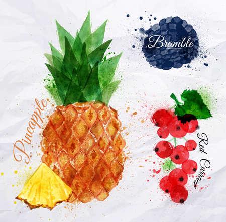 bramble: Fruit watercolor pineapple, bramble, red currant