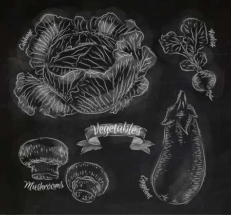 Vegetables cabbage, eggplant, radishes, mushrooms, chalk Vector