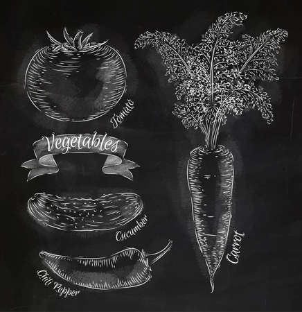 Vegetables carrot, tomato, chili peppers, cucumber chalk Vector