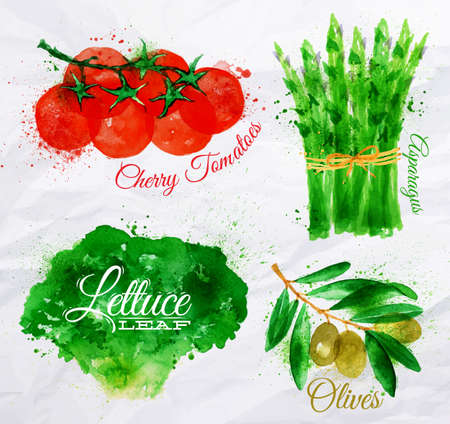 tomatoes: Vegetables set drawn watercolor blots and stains with a spray lettuce, cherry tomatoes, asparagus, olives