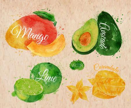 mango fruta: Conjunto de frutas ex�ticas dibuja manchas de acuarela y las manchas con un mango de pulverizaci�n, aguacate, carambola, cal en kraft