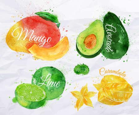 aguacate: Conjunto de frutas exóticas dibuja manchas de acuarela y las manchas con un mango de pulverización, aguacate, carambola, cal Vectores