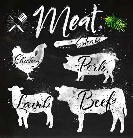 Et sembolleri, sığır, domuz, tavuk, tahtaya tebeşirle hayvanların kuzu el çizim siluetleri ayarlayın. Çizim