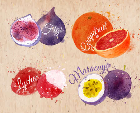 Fruit set drawn watercolor blots and stains with a spray figs, grapefruit, lychee, maracuya in kraft Vector