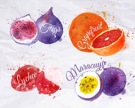 Fruit set drawn watercolor blots and stains with a spray figs, grapefruit, lychee, maracuya