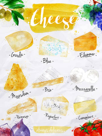 Poster cheese watercolor gouda blue edammer maasdam brie mozzarella parmesan roquefort camembert lettering always delicious drawing in vintage style on white background. Stock Illustratie