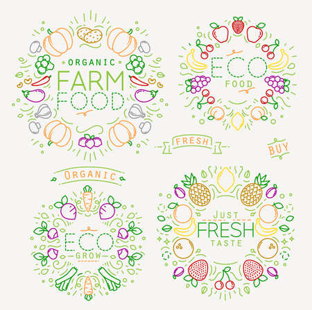 Set of flat fruits and vegetables monograms drawing with color lines on white background