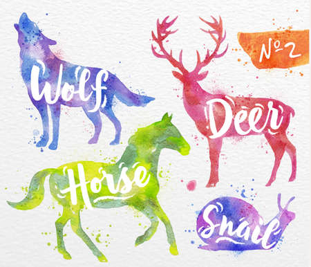 wild: Silhouettes of animal deer, horse, snail, wolf drawing color paint on background of  watercolor paper Illustration