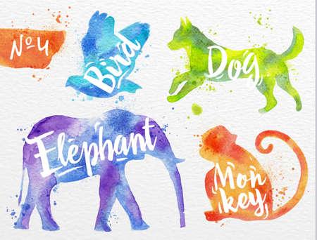 Sylwetki ptaków zwierząt, psa, małpy, słonia rysunku kolorem farby na tle papierze akwarelowym