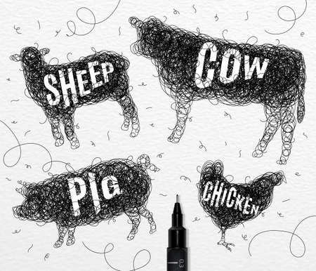 disorderly: Pen hand drawing tangle wild animals chicken, cow, pig, sheep,  with inscription names of animals drawing on paper background
