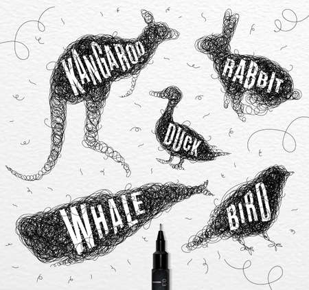 disorderly: Pen hand drawing tangle wild animals duck, whale, bird, rabbit, kangaroo with inscription names of animals drawing on paper background