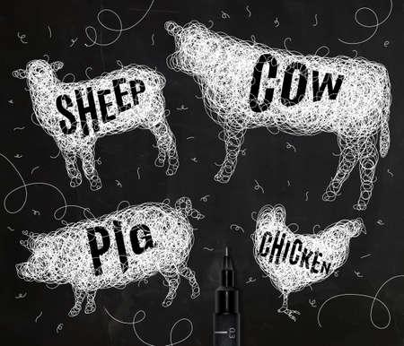fondo blanco y negro: Pluma mano que dibuja maraña de pollo animales salvajes, vacas, cerdos, ovejas, con los nombres de inscripción de los animales dibujo con tinta blanca sobre fondo negro Vectores