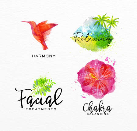 Symbols beauty natural SPA drawing with watercolor, symbol bird, leaf, hibiscus, tropical island