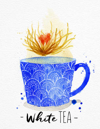 watercolor paper: Watercolor teacup with white tea drawing on watercolor paper background