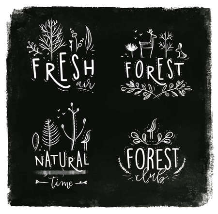 fresh air: Forest labels lettering forest, fresh air, forest club, natural time drawing with chalk on blackboard. Illustration