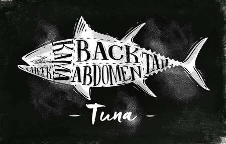 Poster tuna cutting scheme lettering cheek, kama, abdomen, back, tail in vintage style drawing with chalk on chalkboard background